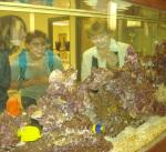 Marine aquatics